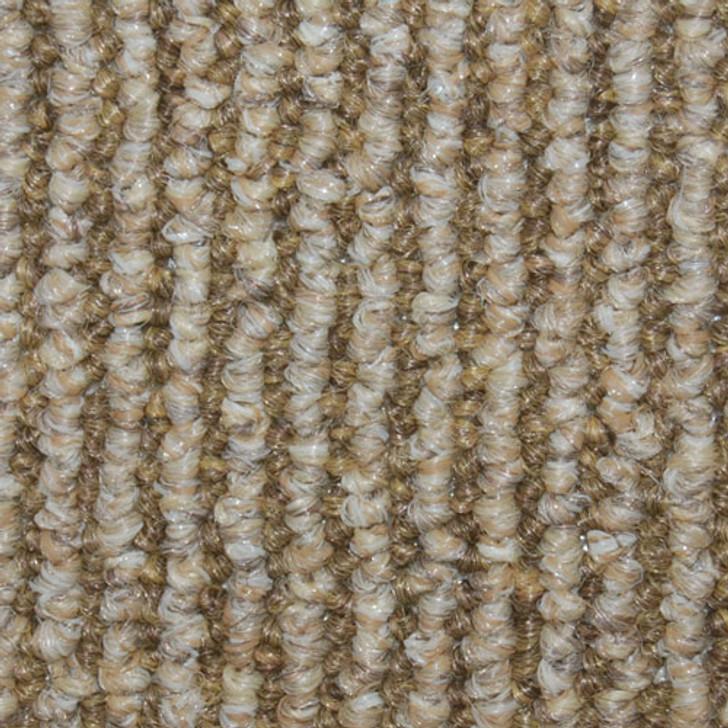 Timberline Indoor Outdoor Carpet