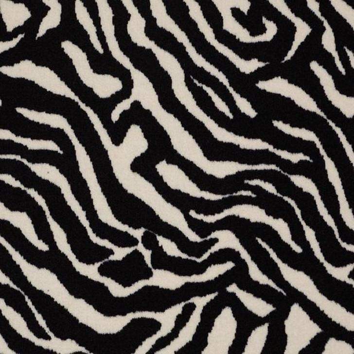 Shaw Philadelphia Call Of The Wild Zebra 54505