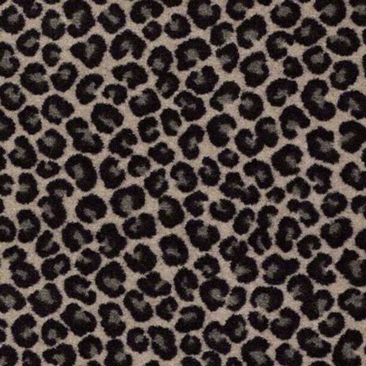 Shaw Philadelphia Call Of The Wild Cheetah 54509 Commercial Carpet