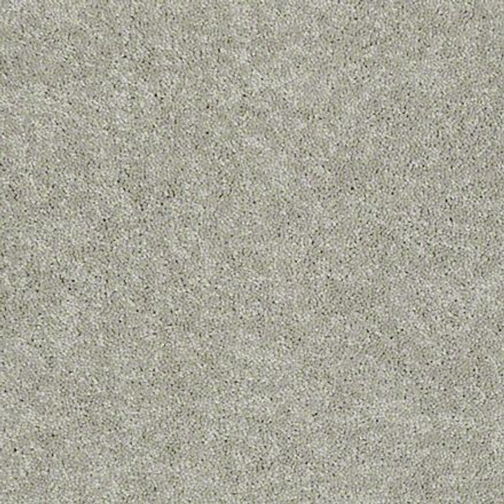 "Georgia Carpet NewBerry I 12"" Residential Carpet"
