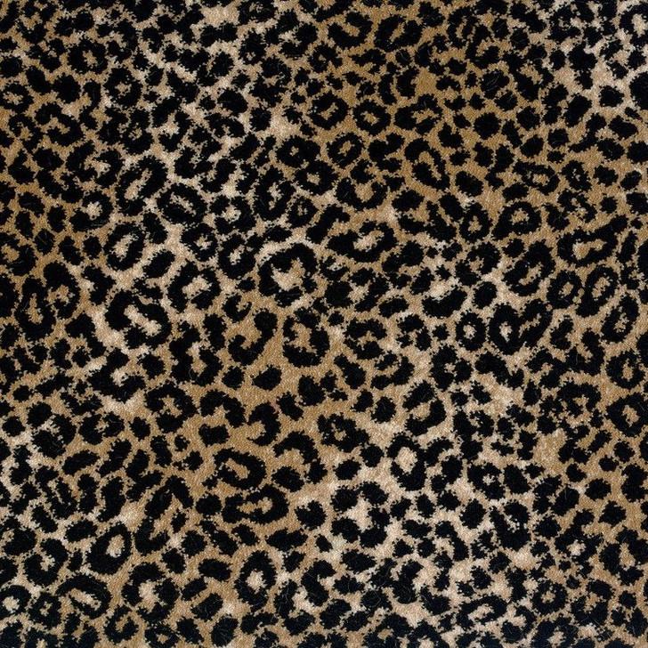Stanton Lake Collection Lake Jaguar Polypropylene Fiber Residential Carpet