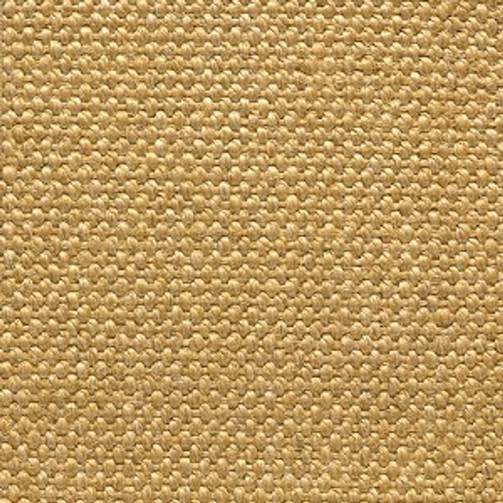 Stanton Sisal Accra Natural Fiber Residential Carpet