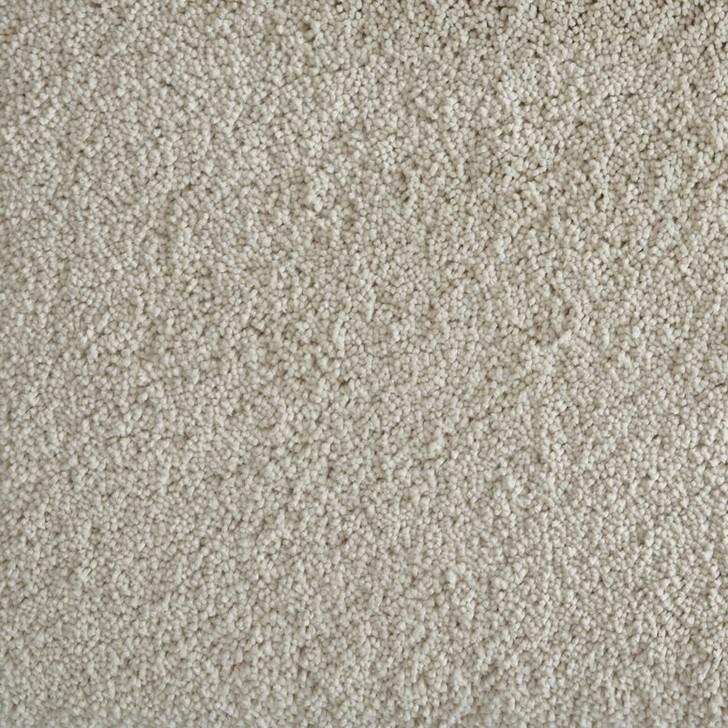 Stanton Avantgarde Shaggy Grove Buff Polypropylene Fiber Residential Carpet