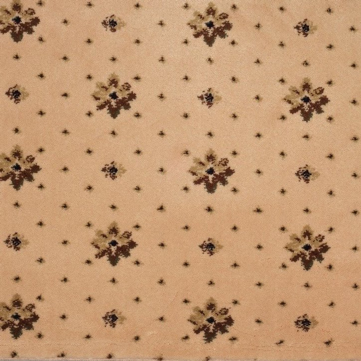 Stanton Earnest Collection Ramona Polypropylene Fiber Residential Carpet