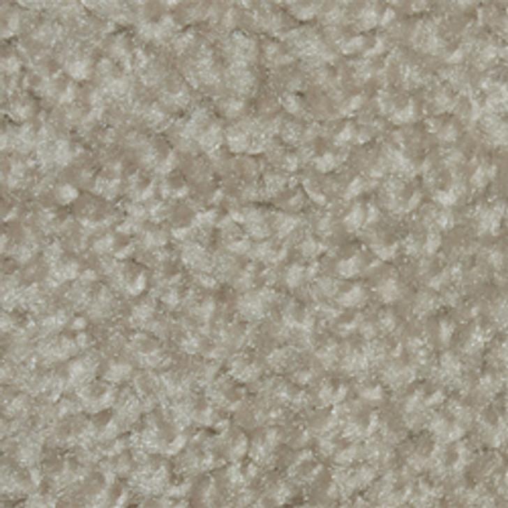 3B620 New Beginning - 210 Cliffside - Textured Plush Carpet