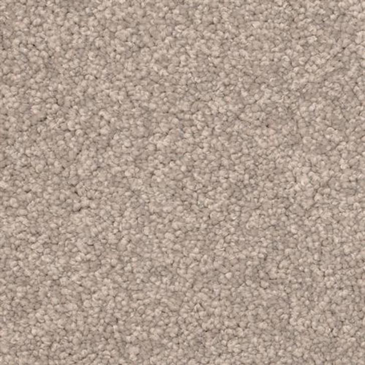 Dixie Home Delight 5453 Residential Carpet