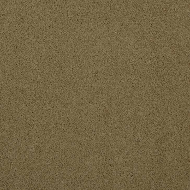 Veranda 6VRD Fawn VRD05 Textured Bolyu Commercial Carpet