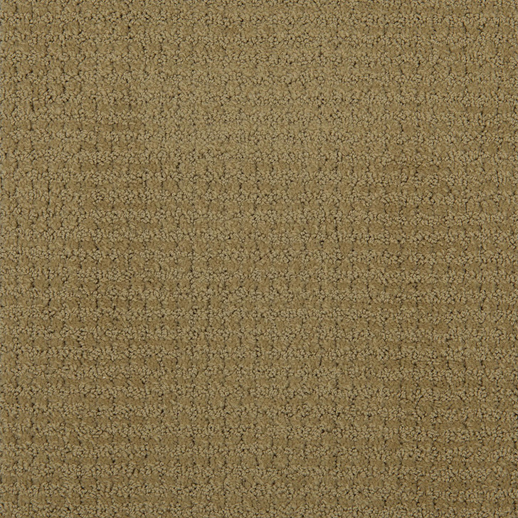 Portico 6PRC Parchment Tip-Sheared Loop  Bolyu Broadloam Commercial Carpet