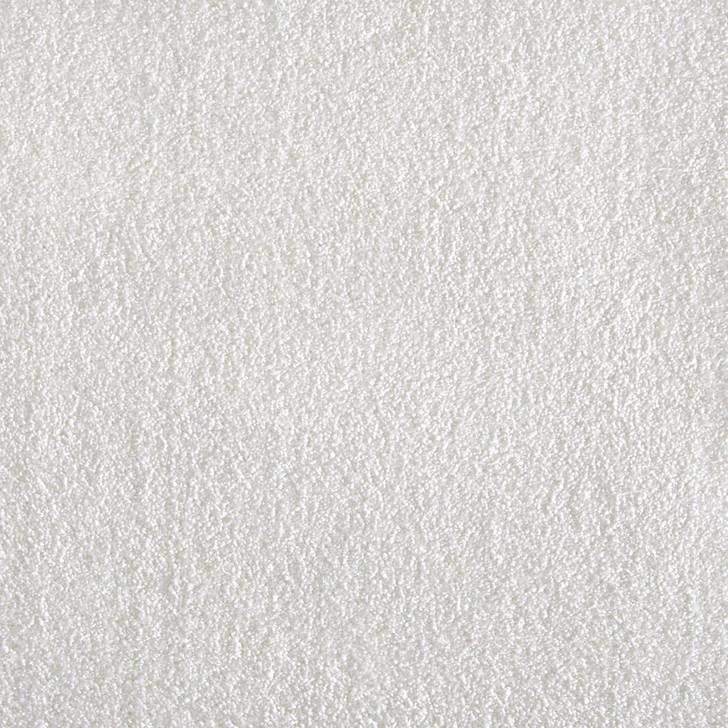 Stanton Atelier Marquee Venue Nylon Fiber Residential Carpet