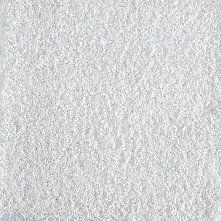 Stanton Atelier Marquee Jazzy Nylon Fiber Residential Carpet