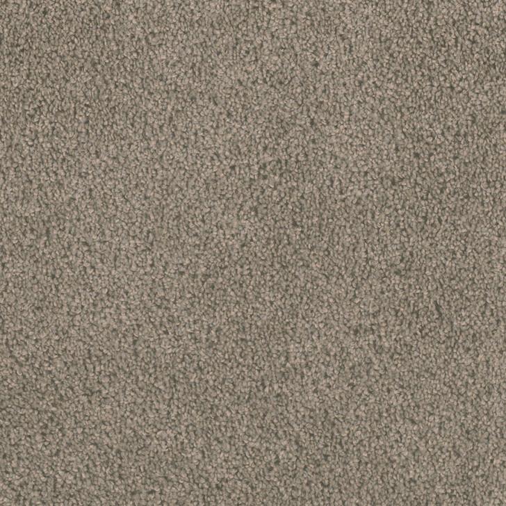 Georgia Carpet Treasure II 55K35 Residential Carpet