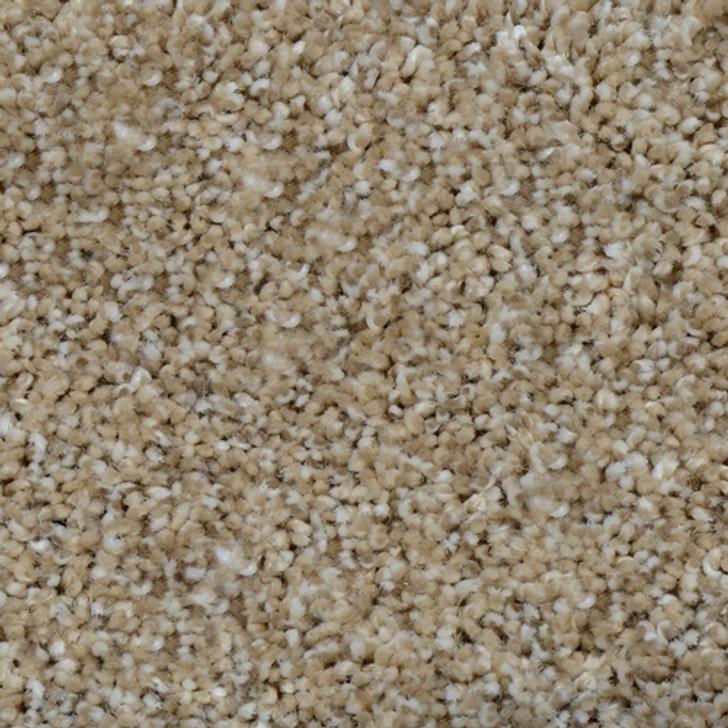 Dream Weaver Glorious 6550 Residential Carpet