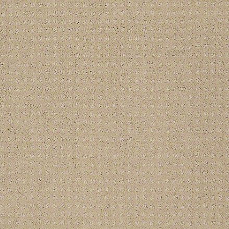 Shaw In Savannah Tusk EA024  Anso Nylon Carpet