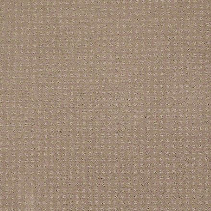 Shaw In Savannah Chameleon EA024  Anso Nylon Carpet