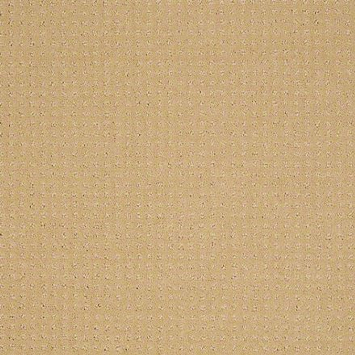 Shaw In Savannah Butter Cream EA024  Anso Nylon Carpet