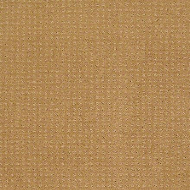 Shaw In Savannah Wheat EA024  Anso Nylon Carpet