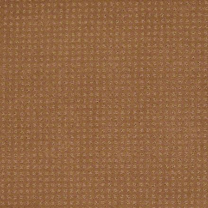 Shaw In Savannah Gold Coin EA024  Anso Nylon Carpet
