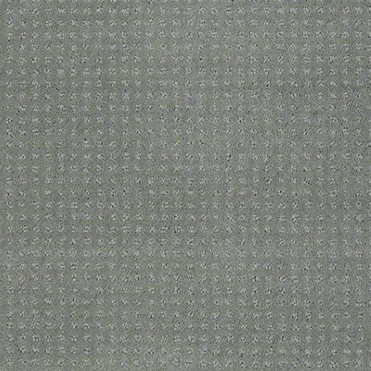 Shaw In Savannah Aloe EA024  Anso Nylon Carpet