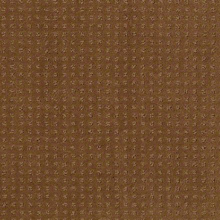 Shaw In Savannah Pebble Creek EA024  Anso Nylon Carpet