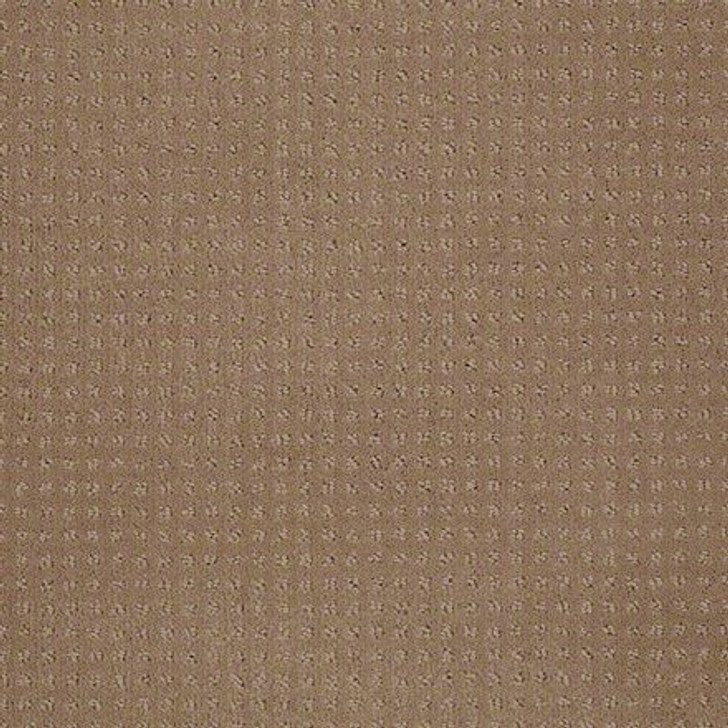 Shaw In Savannah Perfect Beige EA024  Anso Nylon Carpet