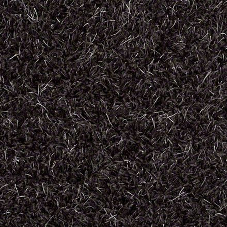 Shaw Bling Z6809 Black Marble Tuftex Residential Carpet