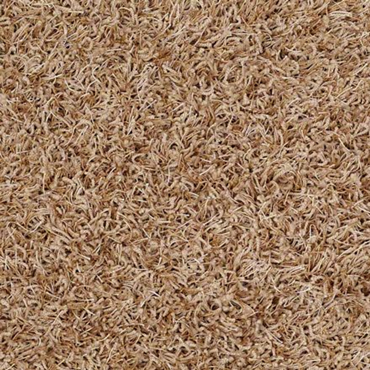 Shaw Bling Z6809  Gingerspice Tuftex Residential Carpet