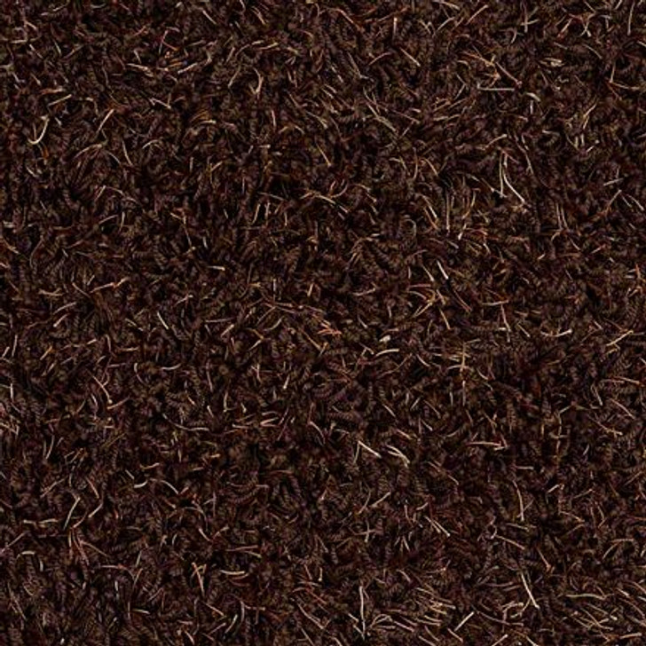 Shaw Bling Z6809 Chocolate Parfa Tuftex Residential Carpet