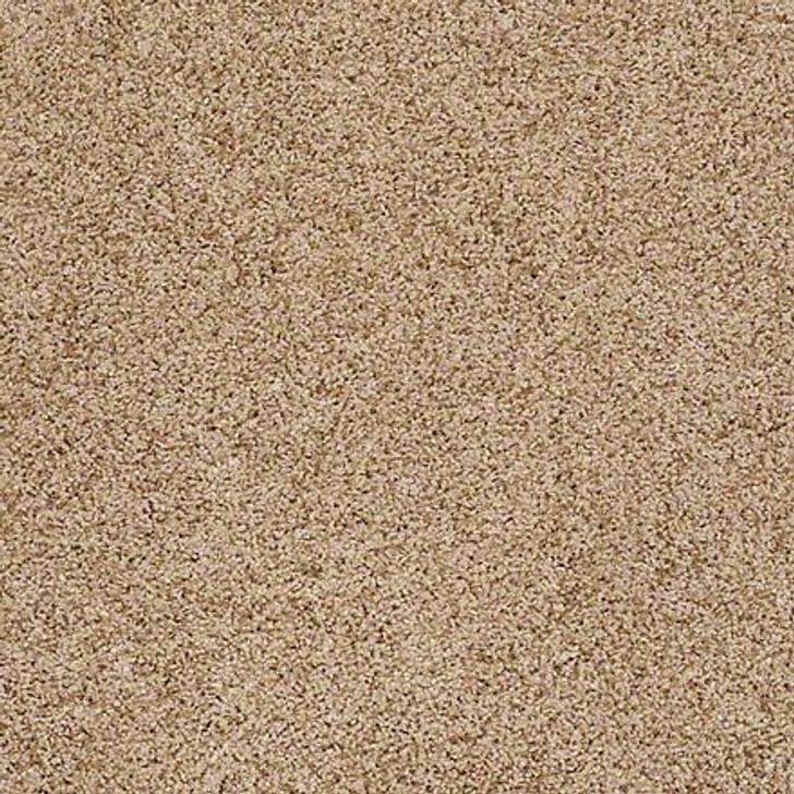 Shaw That's Life EA599 Majestic LifeGuard Carpet