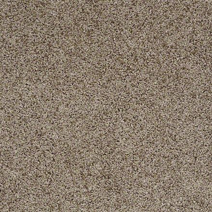 Shaw That's Life EA599 Stately LifeGuard Carpet