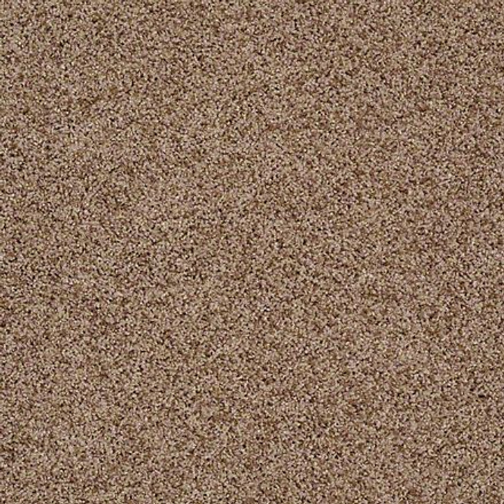 Shaw That's Life EA599 Classic LifeGuard Carpet