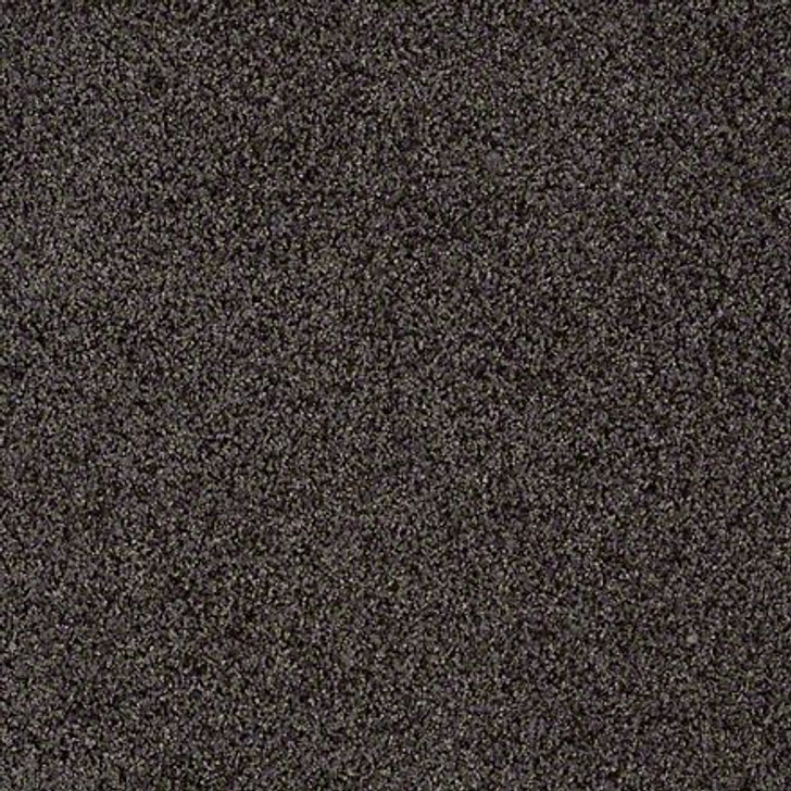 Shaw That's Life EA599 Alluring LifeGuard Carpet