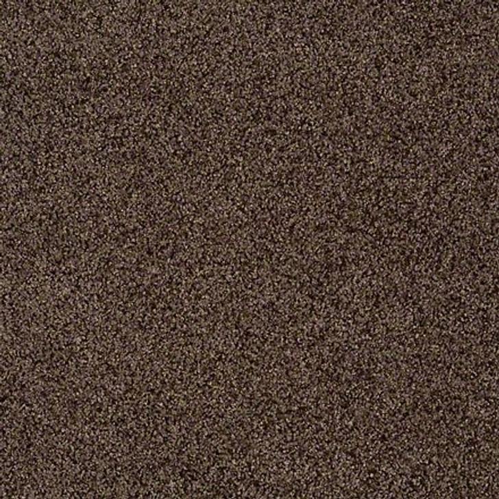 Shaw That's Life EA599 Divine LifeGuard Carpet