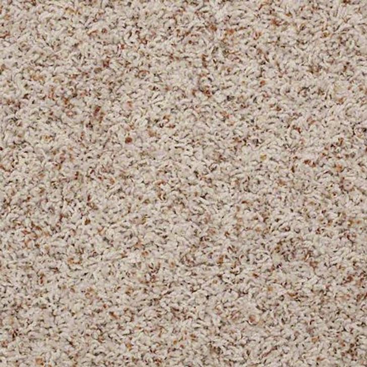 Shaw Guess Work (B) 52U00 Shell ANSO Nylon Carpet