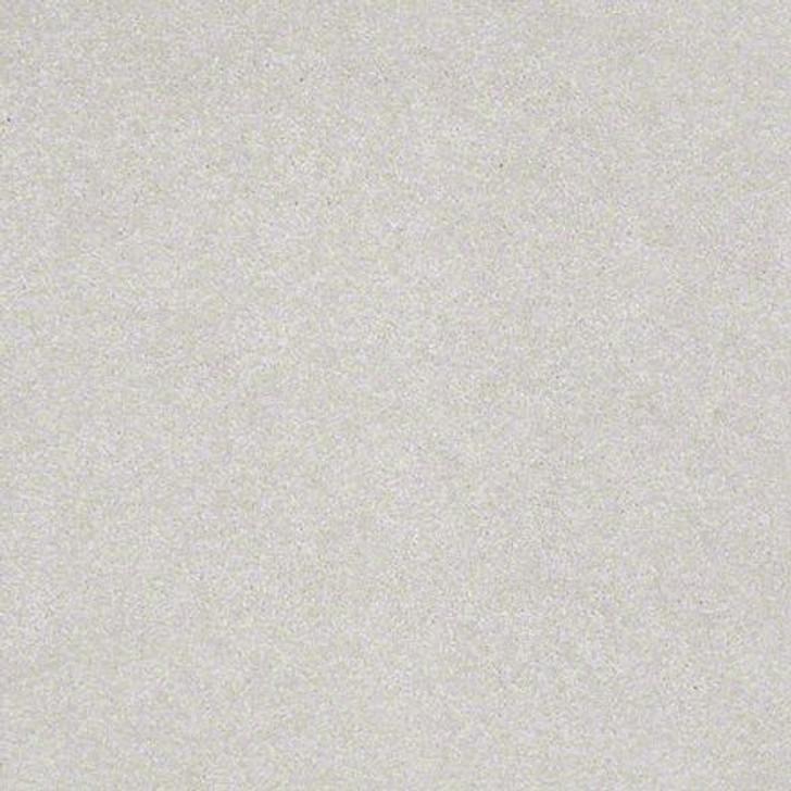 Shaw Lasting Impressions (S) EA585 Graceful LifeGuard Carpet