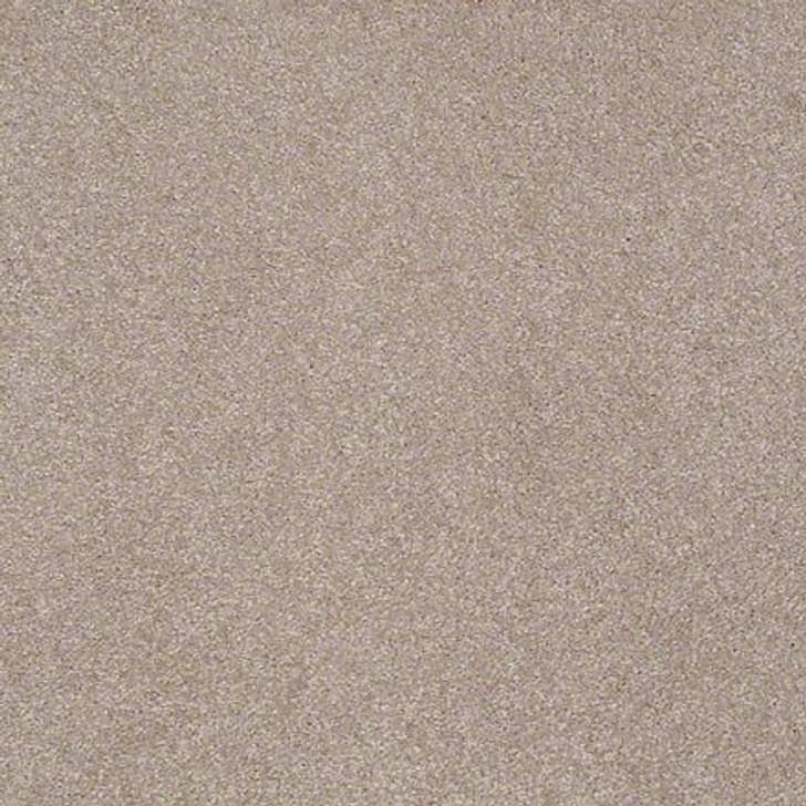 Shaw Lasting Impressions (S) EA585  Exquisite LifeGuard Carpet