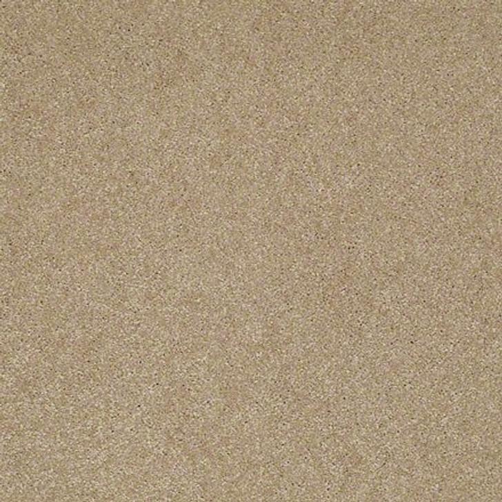 Shaw Lasting Impressions (S) EA585 Majestic LifeGuard Carpet