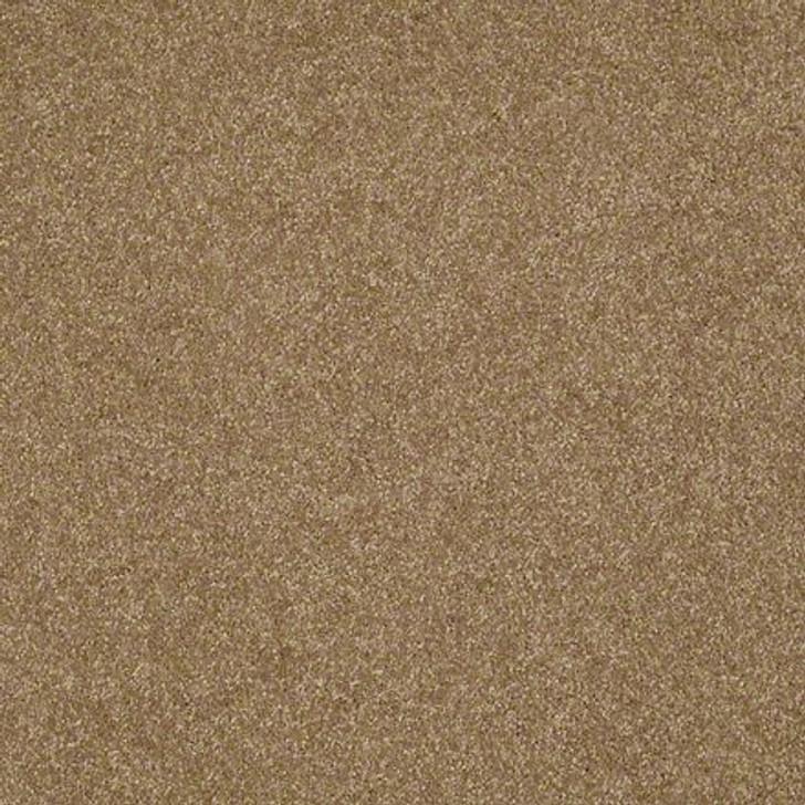 Shaw Lasting Impressions (S) EA585 Noble LifeGuard Carpet