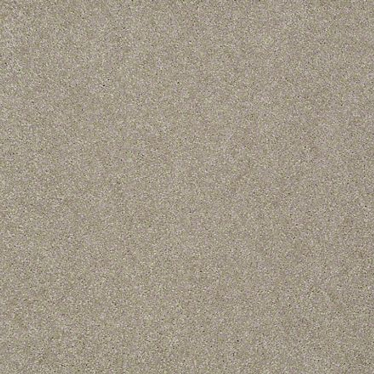 Shaw Lasting Impressions (S) EA585 Clever LifeGuard Carpet
