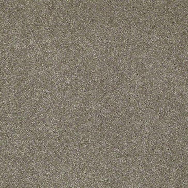 Shaw Lasting Impressions (S) EA585 Stately LifeGuard Carpet