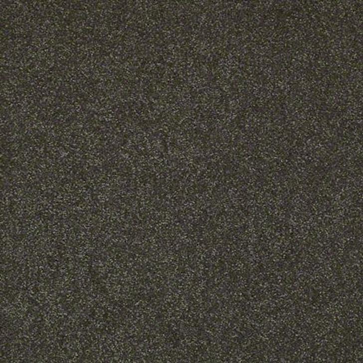 Shaw Lasting Impressions (S) EA585 Plantation LifeGuard Carpet