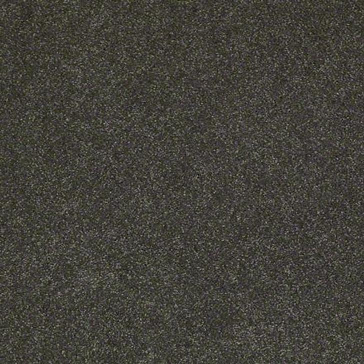 Shaw Lasting Impressions (S) EA585 Estate LifeGuard Carpet