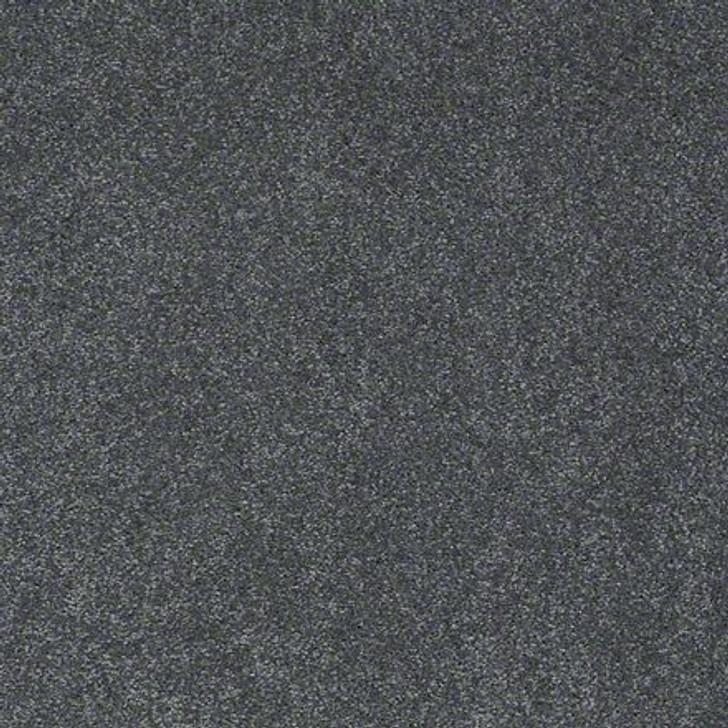Shaw Lasting Impressions (S) EA585 Peacful LifeGuard Carpet