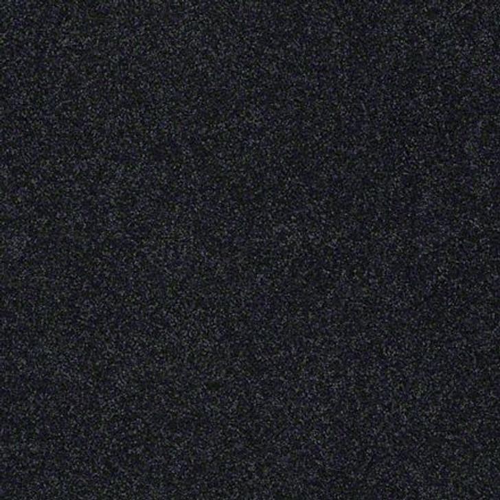 Shaw Lasting Impressions (S) EA585 Chic  LifeGuard Carpet
