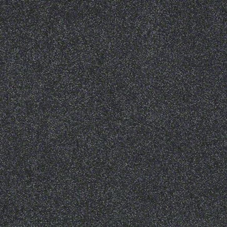 Shaw Lasting Impressions (S) EA585 Stylish LifeGuard Carpet
