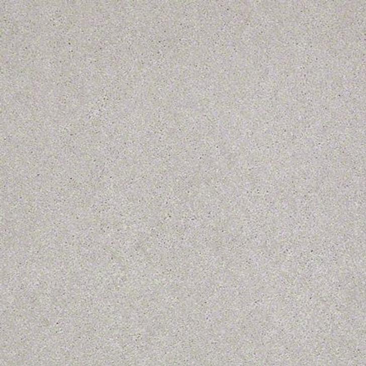 Shaw Lasting Impressions (S) EA585 Modern LifeGuard Carpet