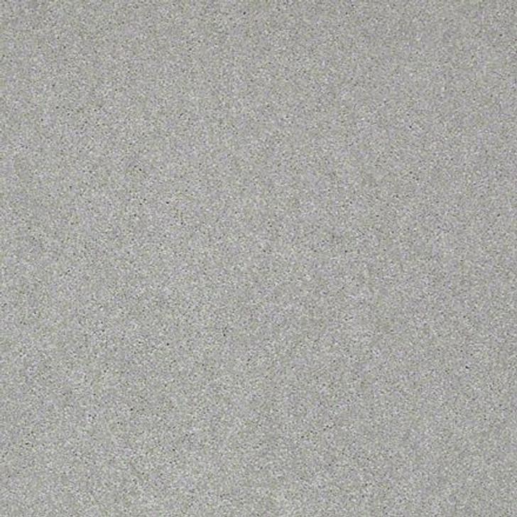 Shaw Lasting Impressions (S) EA585 Metallic LifeGuard Carpet