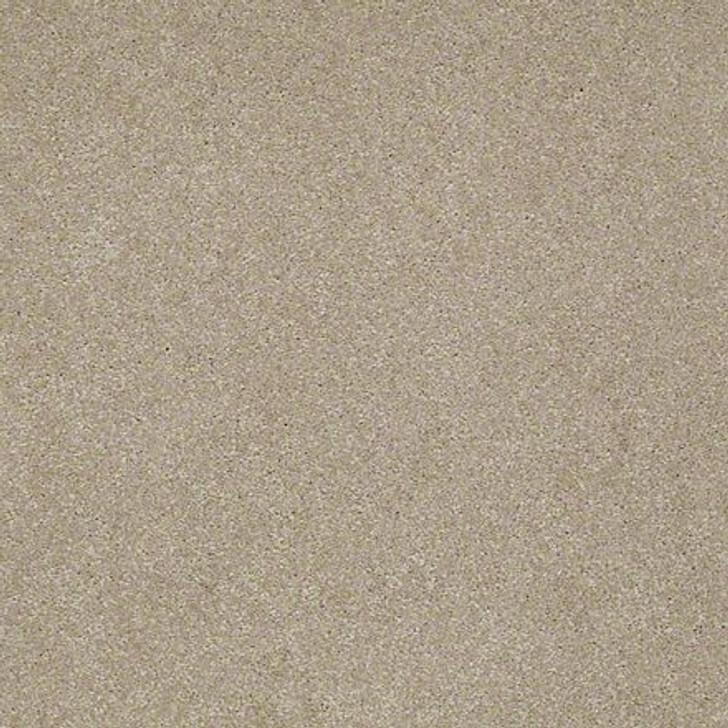 Shaw Lasting Impressions (S) EA585 Picturesque LifeGuard Carpet