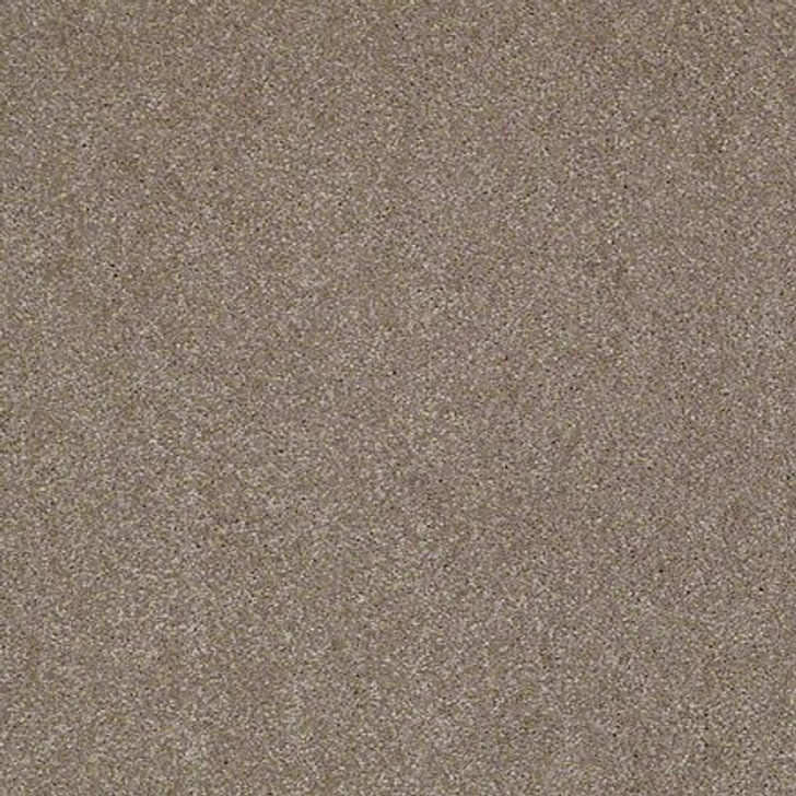 Shaw Lasting Impressions (S) EA585 Artistic LifeGuard Carpet