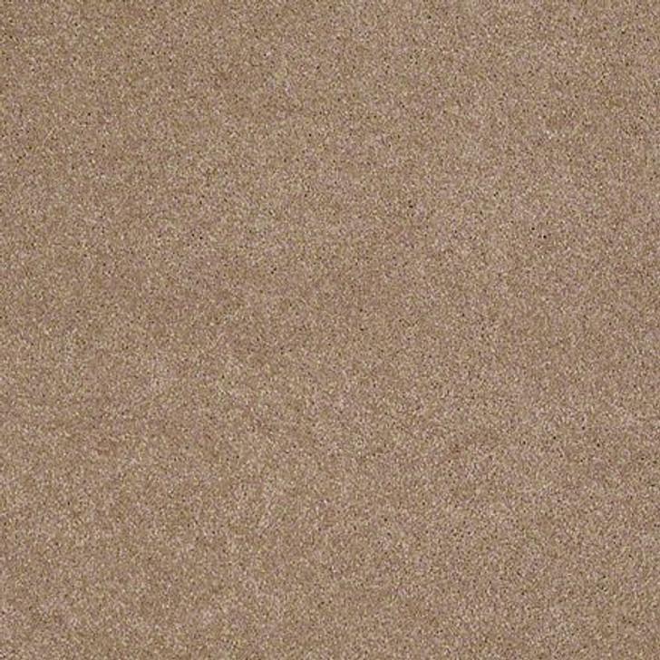 Shaw Lasting Impressions (S) EA585 Classic LifeGuard Carpet