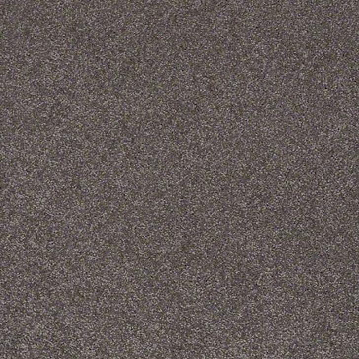 Shaw Lasting Impressions (S) EA585 Refined LifeGuard Carpet